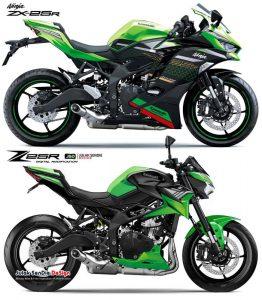 Kawasaki Z25r 1