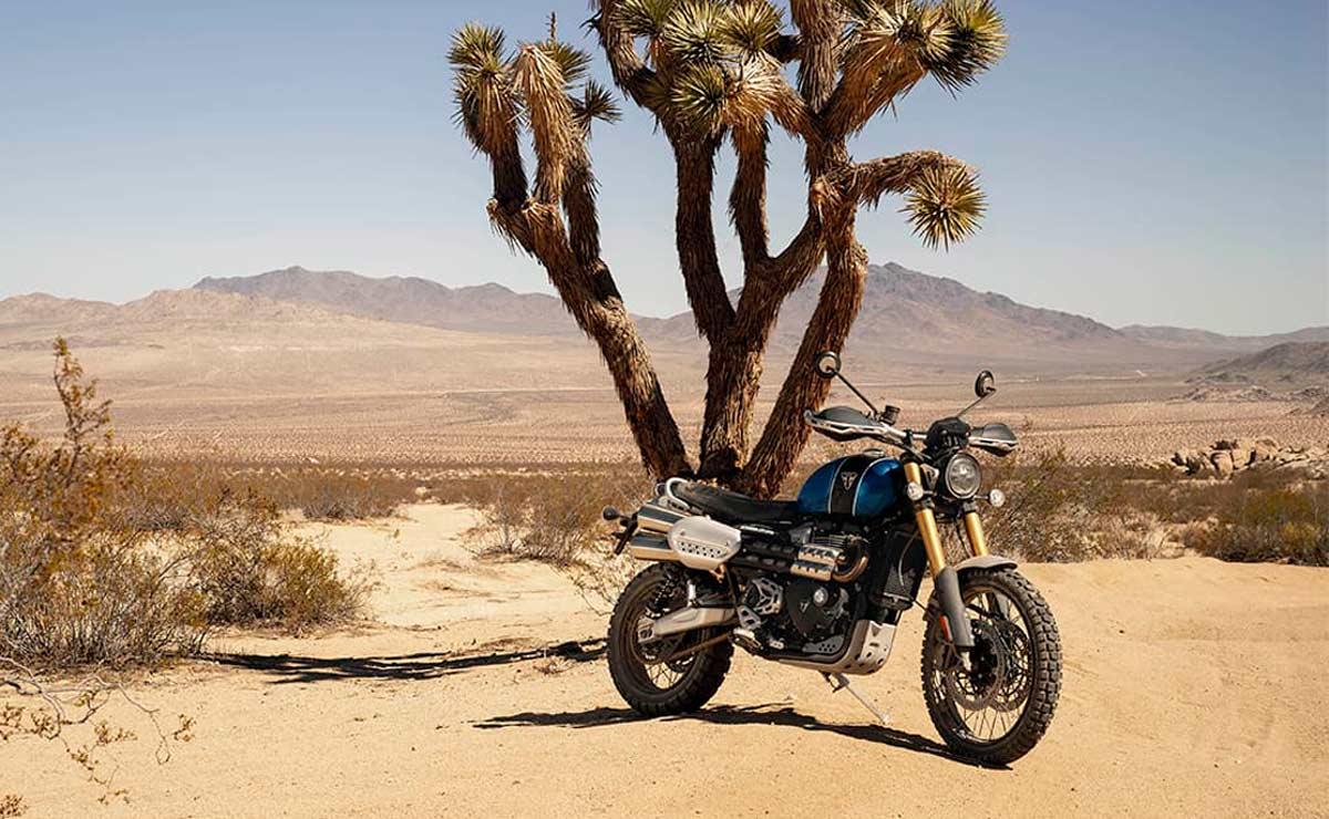 Triumph scrambler desierto
